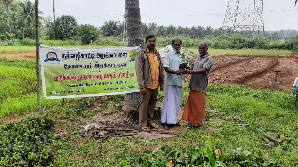 Nalvazhikatti Tree Distribution